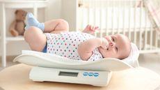 Protein Berperan dalam Mencegah Berat Bayi Lahir Rendah, Benarkah?