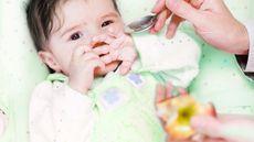 Hati-hati, Ini Gangguan Kesehatan Akibat si Kecil Malas Makan Buah (Ermolaev Alexander/Shutterstock)