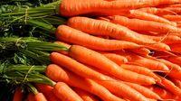Manfaat Makan Wortel untuk Menurunkan Risiko Kanker Payudara