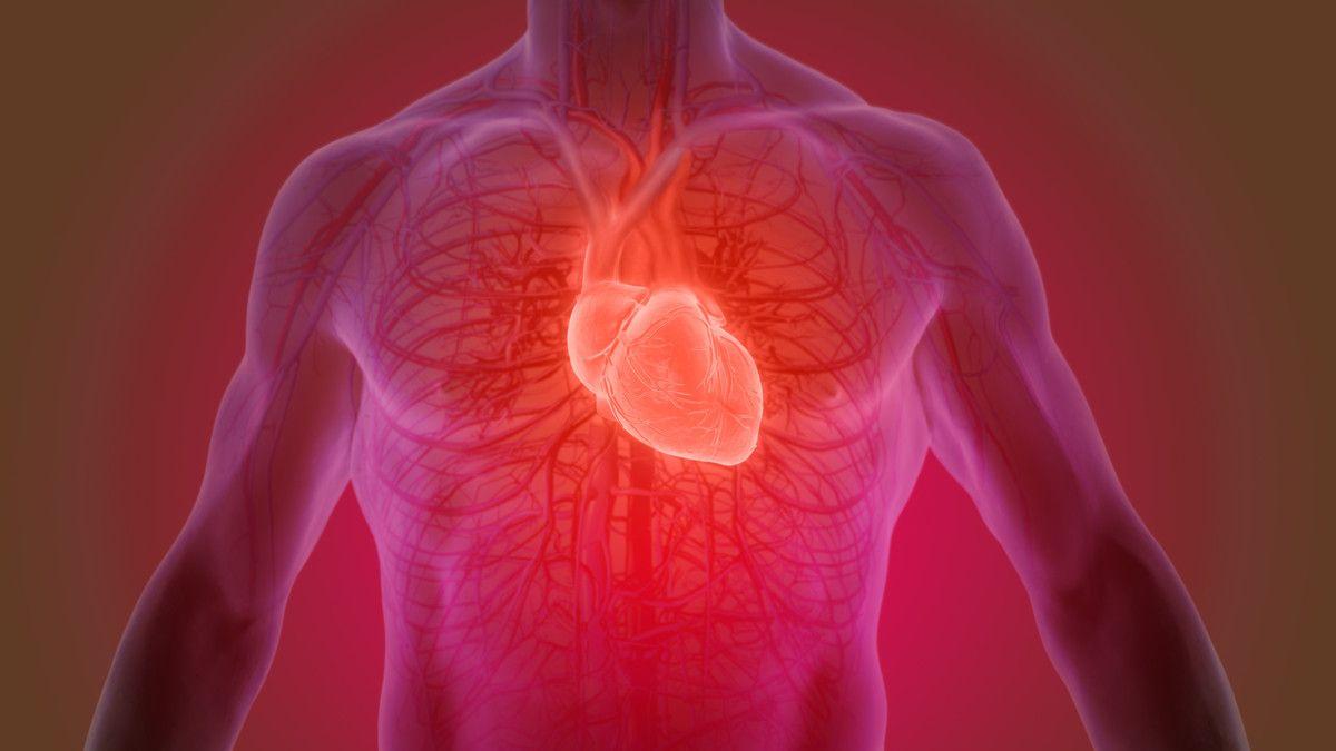 4 Penyakit yang Berhubungan dengan Jantung