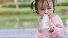 Ini Manfaat Susu untuk Kesehatan Pencernaan Si Kecil