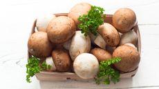 Manfaat Jamur untuk Penderita Diabetes