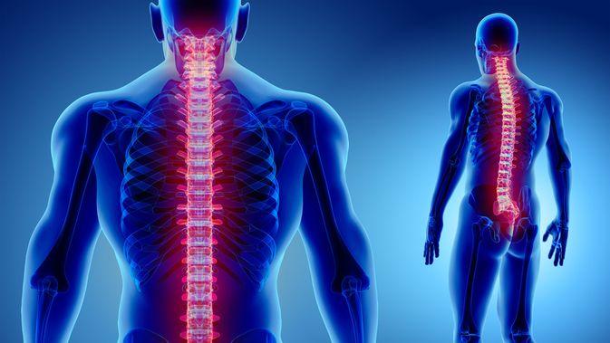 5 Kebiasaan yang Berbahaya bagi Tulang Belakang - Info Sehat Klikdokter.com