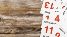4 Hal Ini Bikin Kalender Masa Subur Tidak Efektif (cdstocks/Shutterstock)