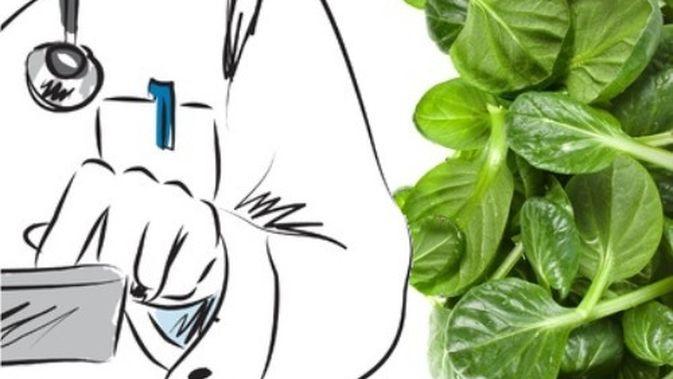 Cara Tepat Makan Bayam Info Sehat Klikdokter Com