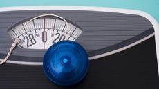 5 Kiat Sukses Turunkan Berat Badan  Tanpa Efek Yo-Yo (Karen Roach/Shutterstock)