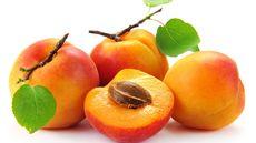 Catat, 4 Manfaat Aprikot untuk Kesehatan Kulit (Kaband/Shutterstock)