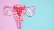 Tanda Kista Ovarium Dilihat dari Vagina