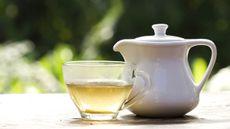 Lawan Plak Gigi yang Berbahaya dengan White Tea
