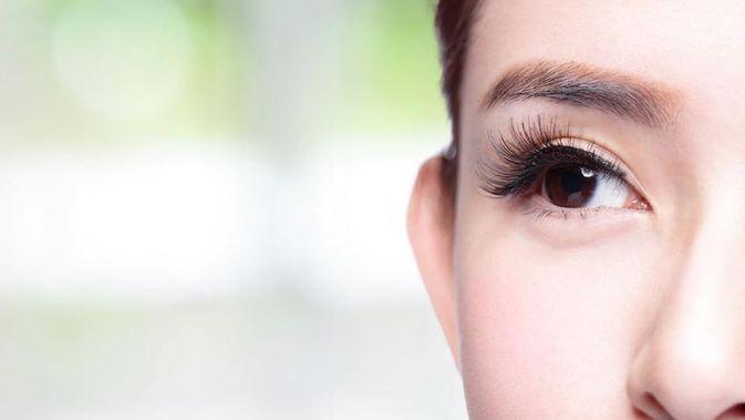 10 Cara Menebalkan Bulu Mata Dan Membuatnya Lentik