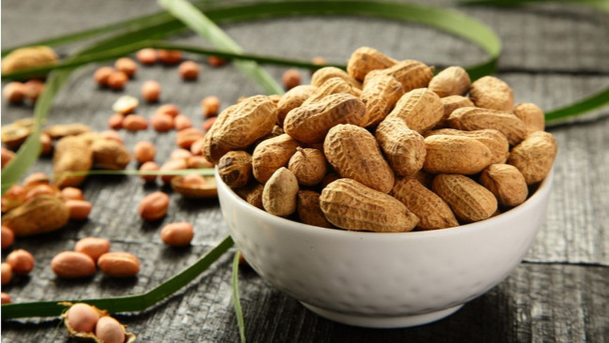 Apakah Penderita Asam Urat Tidak Boleh Konsumsi Kacang