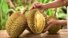 11 Manfaat Durian Meski Sering Dituding Picu Kolesterol Tinggi (Taveesak Srisomthavil/Shutterstock)