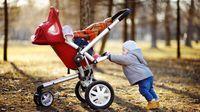 Seorang Anak sedang Mendorong Stroller