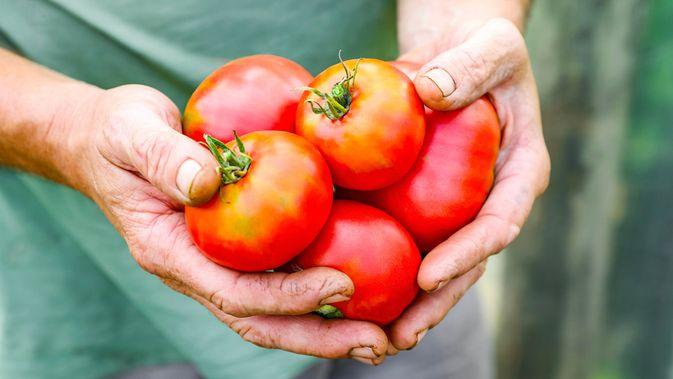 Benarkah Tomat Bikin Parah Radang Tenggorokan