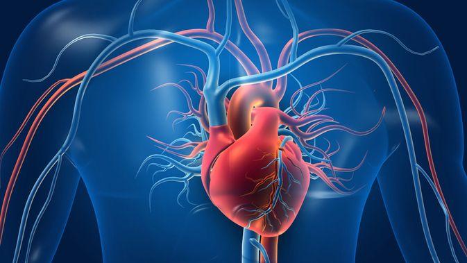 Ini Bahaya Olahraga Berlebihan bagi Kesehatan Jantung