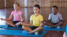 Ini Dia Manfaat Yoga untuk Anak (Wavebreakmedia/Shutterstock)