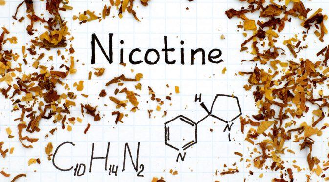 Kecanduan Nikotin