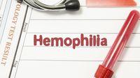 Bahaya Komplikasi Hemofilia yang Harus Anda Waspadai