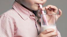 Anak Laki-laki Dilarang Minum Susu Kedelai, Mitos atau Fakta? (Evgeny Ustyuzhanin/123rf)
