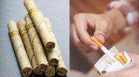 Rokok Herbal dan Rokok Tembakau