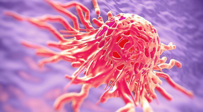 Pencegahan Tumor
